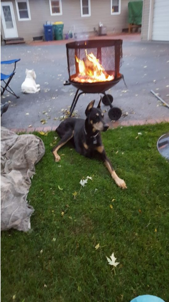 Anniversary/Birthday campfire
